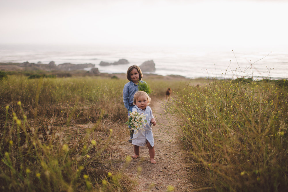 documentary big sur lifestyle children photographer intimate