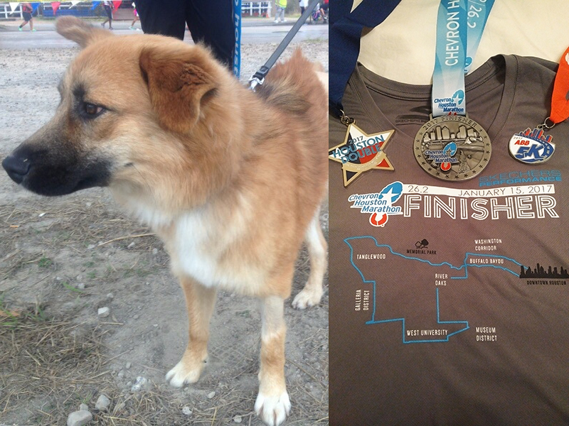 Max, the 3-legged wonder dog cheering me on at my first marathon.