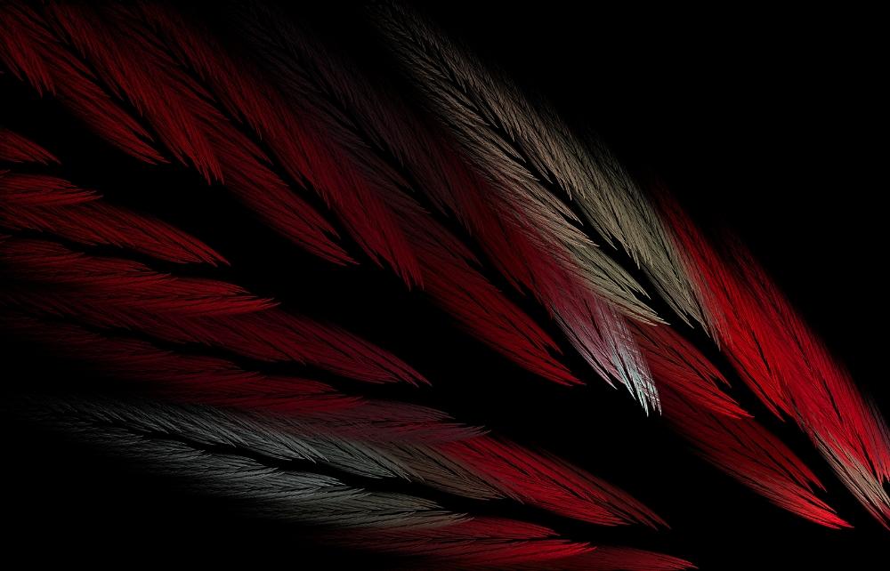 cardinalFinalsmall.jpg