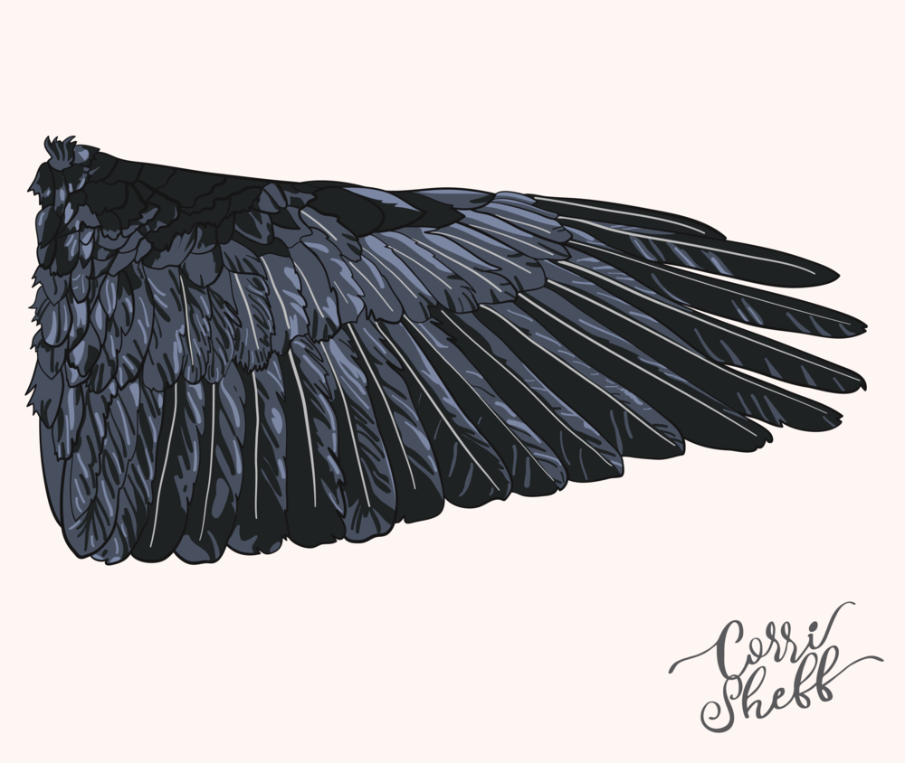 wing@4x.png