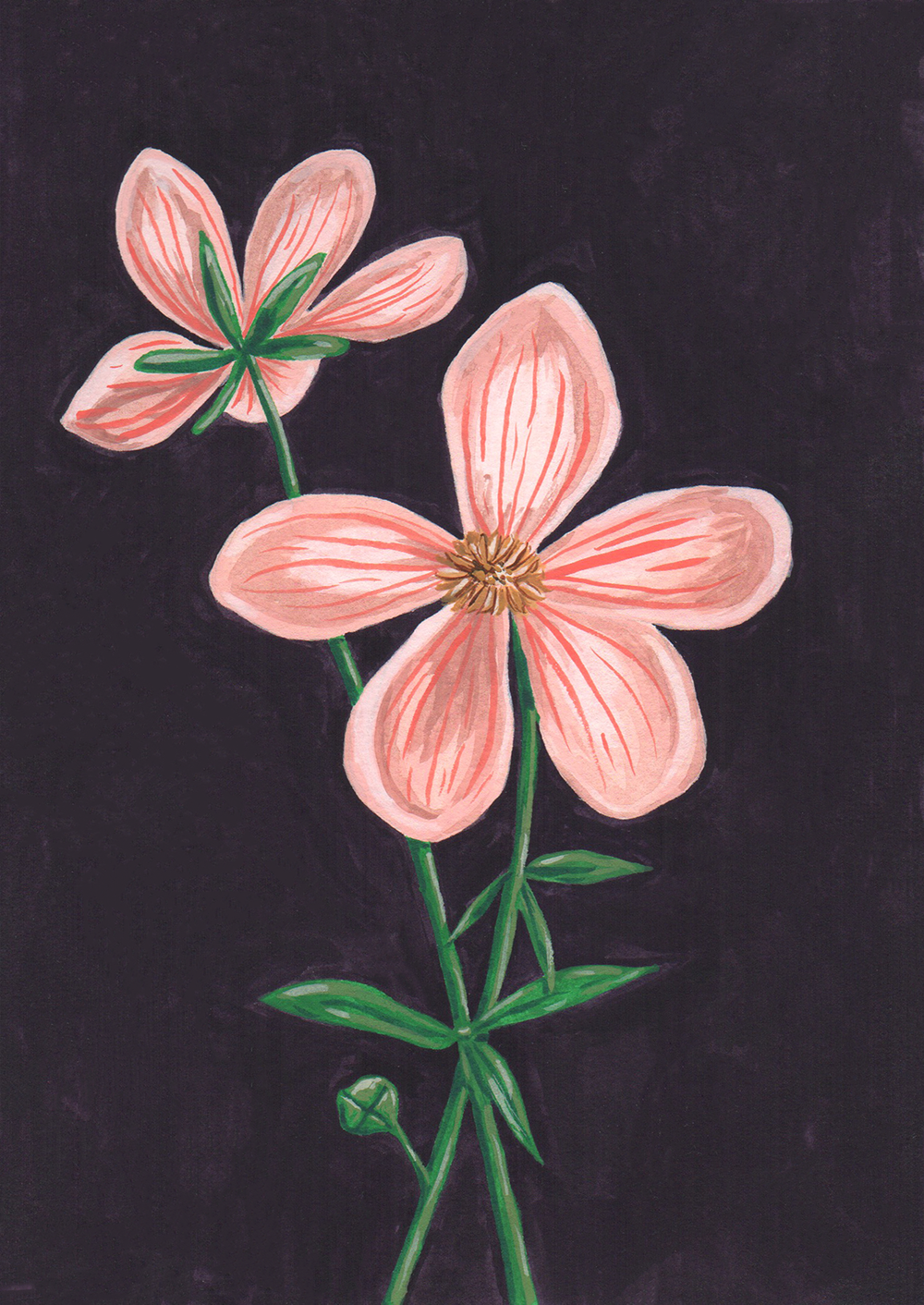 floral2_5x7.png