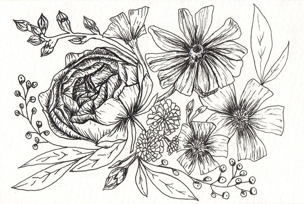 drawing1_corrisheff.jpg