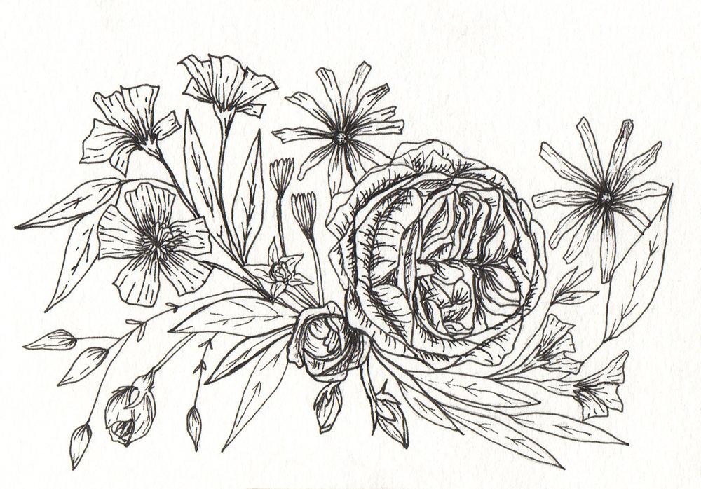 drawing2_5x7.jpg
