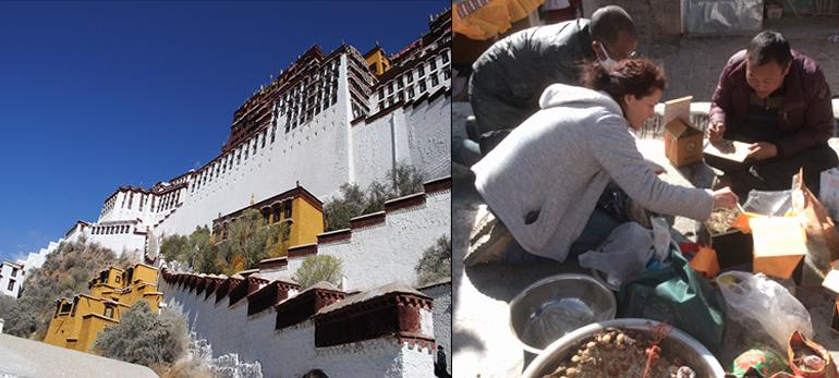 Au Tibet, de monastères en monastères - Le Potala