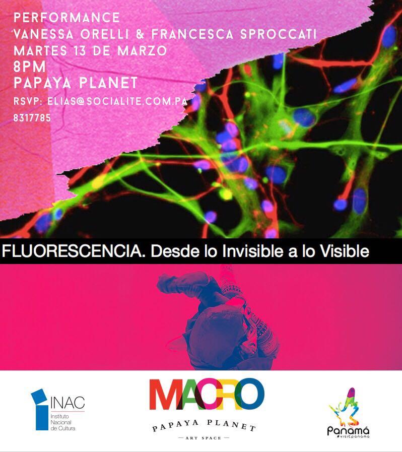 FLYER MACROFEST - Fluorescencia.JPG