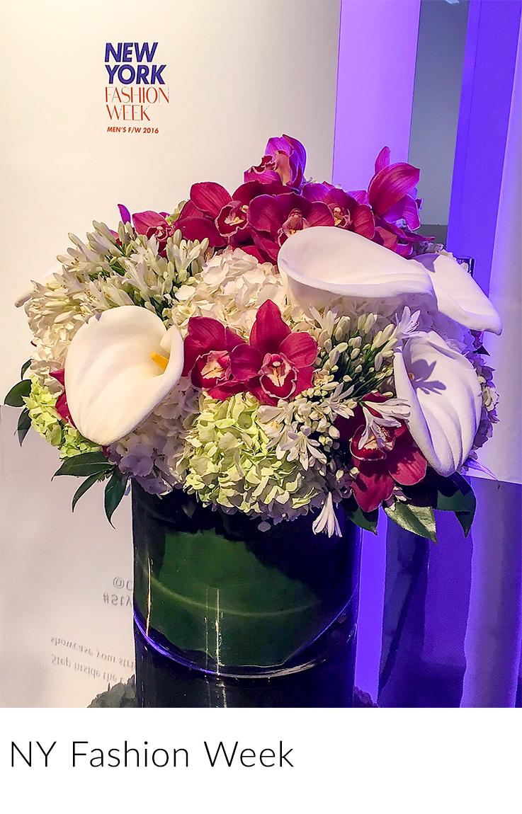 2-NY-Fashion-Week_1-crop.jpg