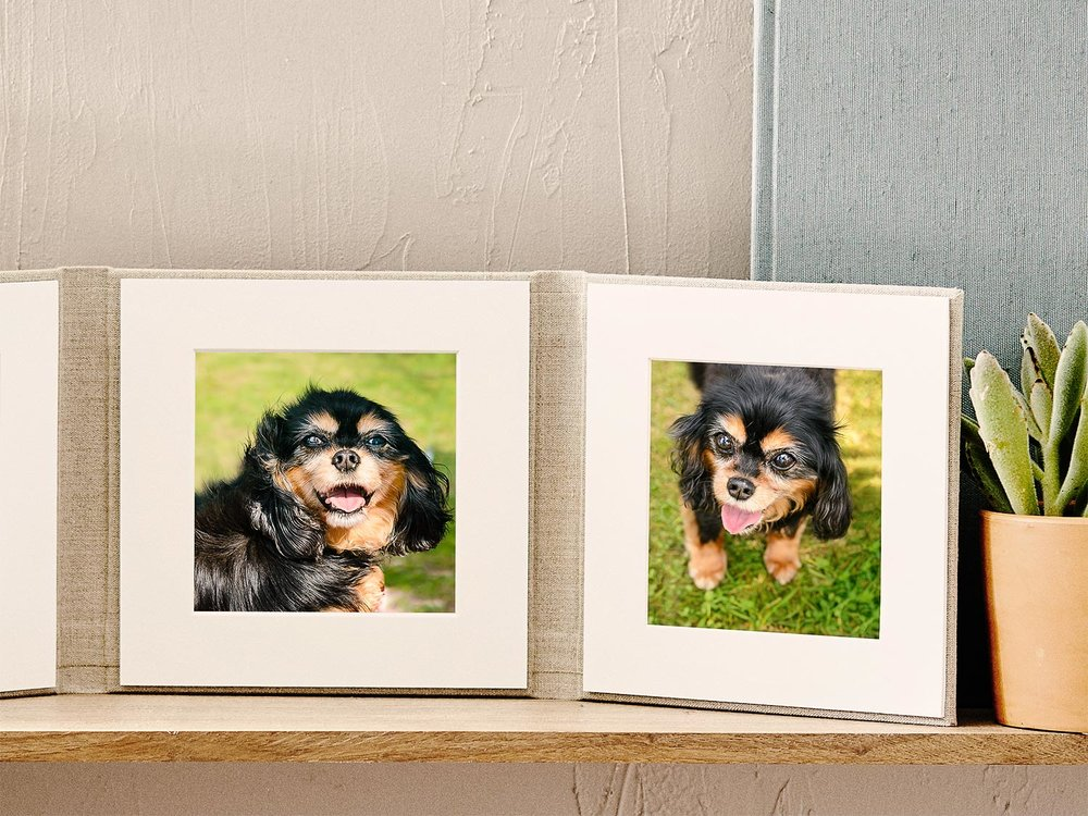 Handcrafted matted portrait folio