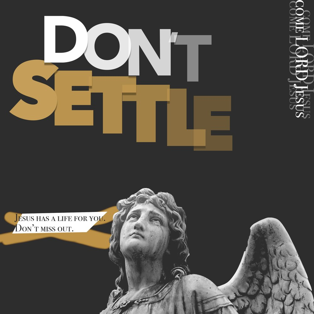 Don't Settle - Square.JPG