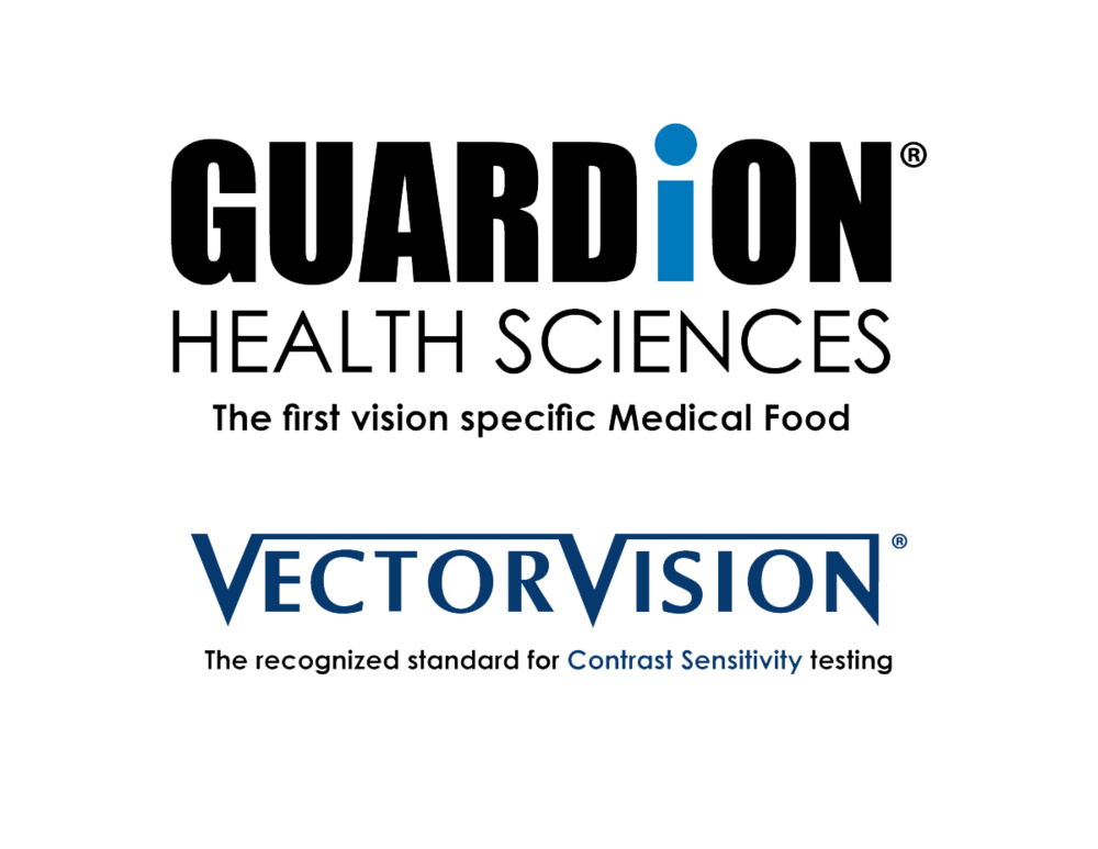 GUARDiON-and-VectorVision-logo.png