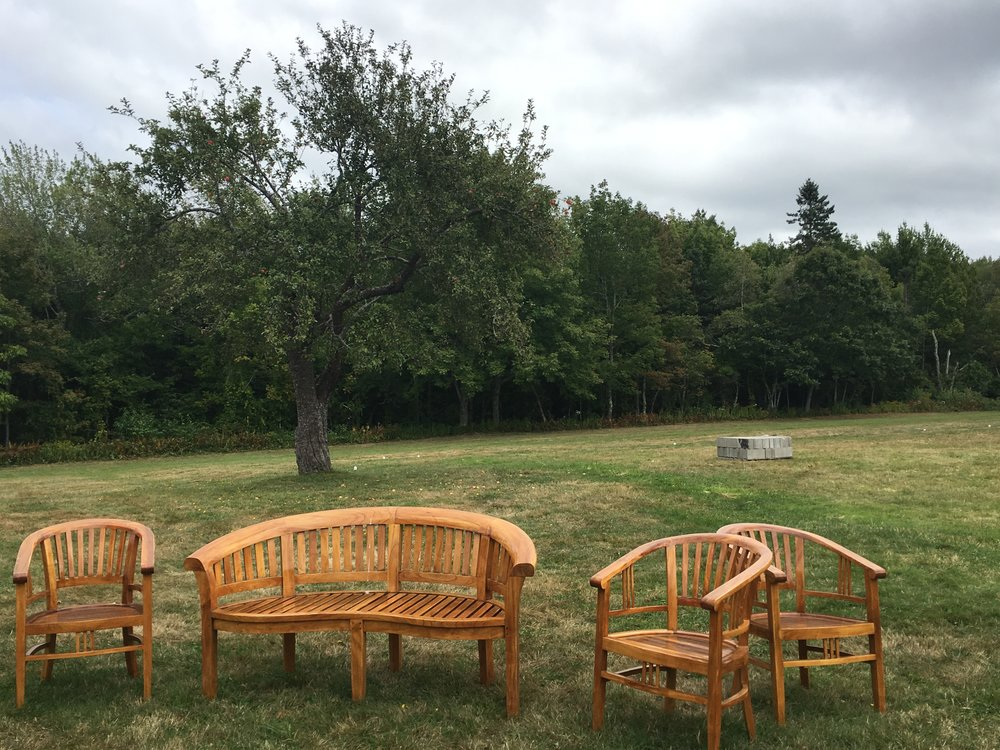 benches and apple trees