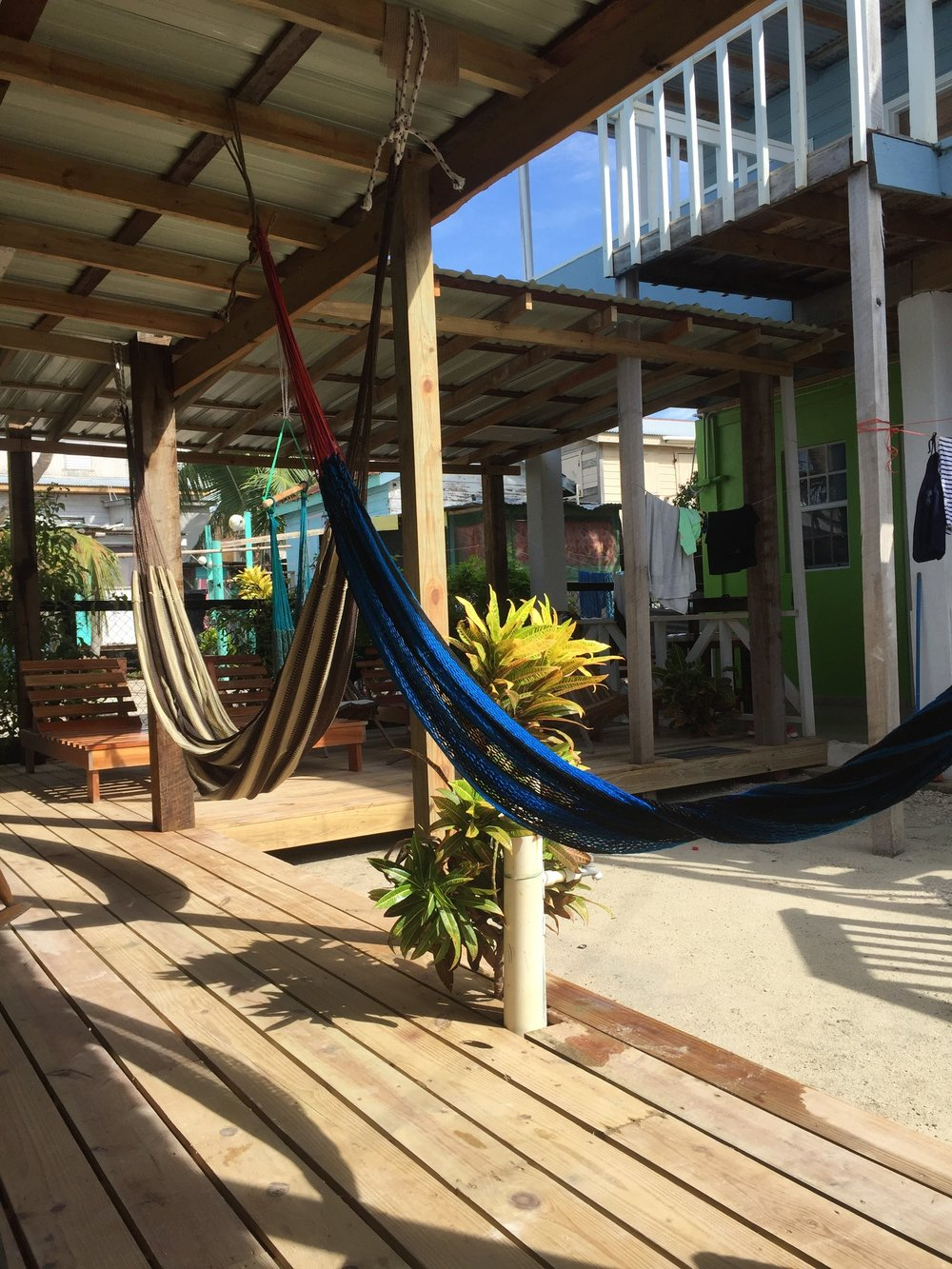 Hammocks at my hostel in Caye Caulker, Belize on a sunny day.
