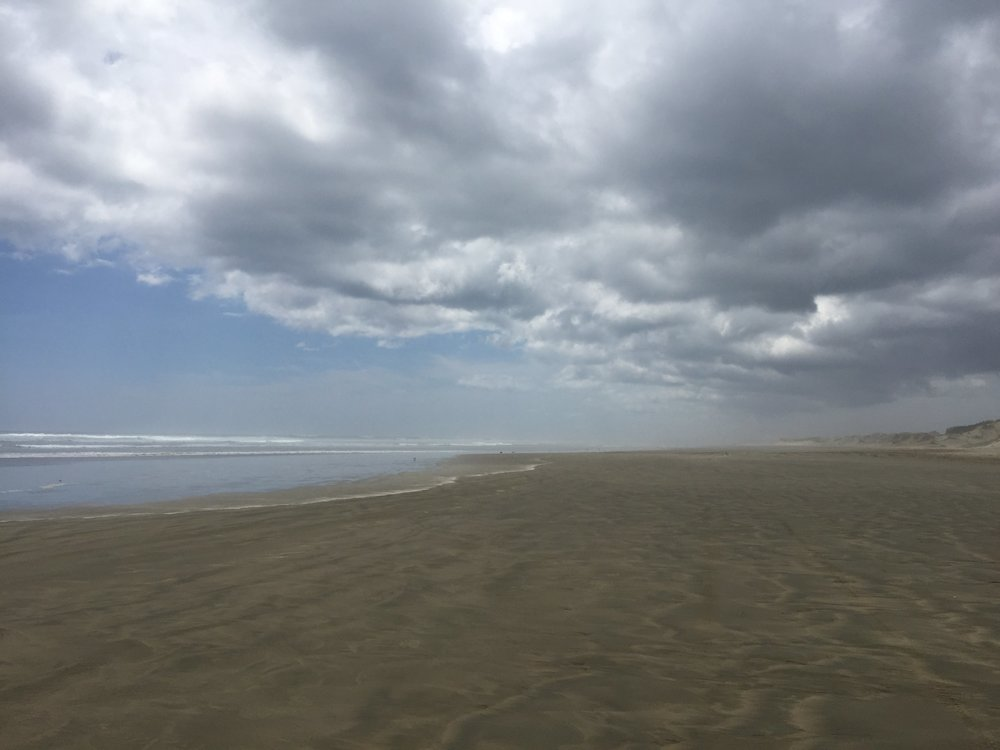 Ninety Mile beach, North Island, New Zealand