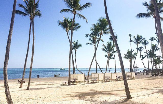 📍: 🇩🇴 | Caribbean cool 😎| #playabavaro #bavarobeach #puntacana #igerspuntacana #ig_puntacana #toppuntacanaresorts #meliacaribetropical #thelevelatmelia #thelevelatmeliacaribetropical #thelevel #dominicanrepublic #republicadominicana #igersdominicanrepublic #igersdominicana #ig_dominicanrepublic #beachholiday #luxuryresorts #photooftheday #picoftheday #bestoftheday #travelgram #instatravel #instaphoto #instapic #instagood #traveladdict #traveldeeper #lovetheworld #tourtheplanet #letsgoeverywhere