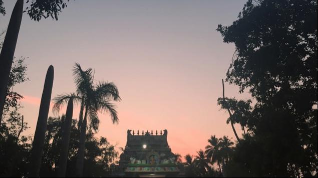 Sri Rangam at Sunset