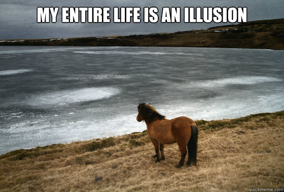 my life is an illusion.jpg