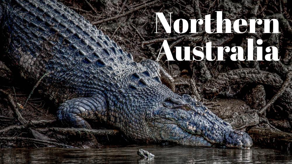 Northern Australia Portfolio