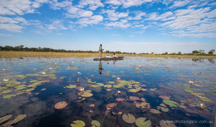 photoorganic.com.au-763.jpg