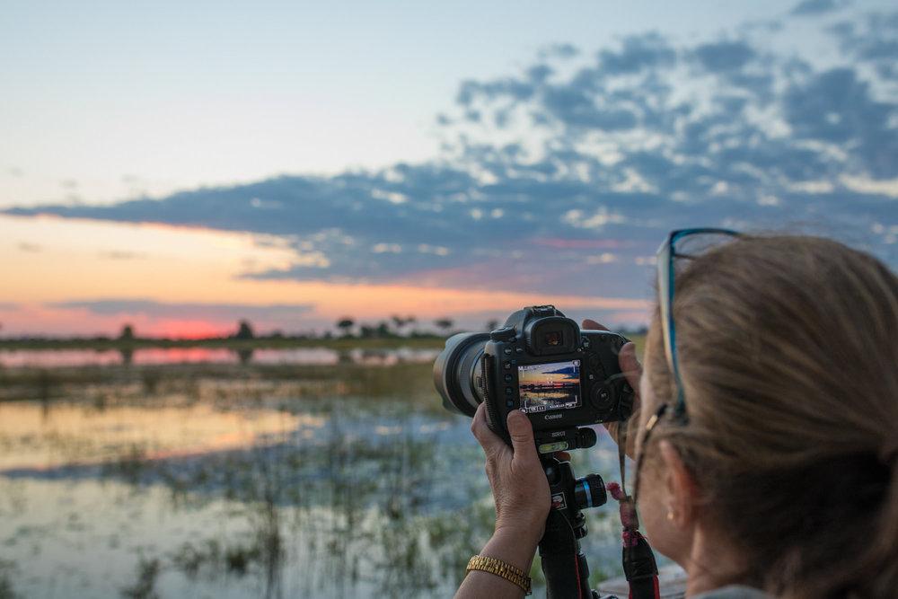 www. photoorganic.com.au8.jpg