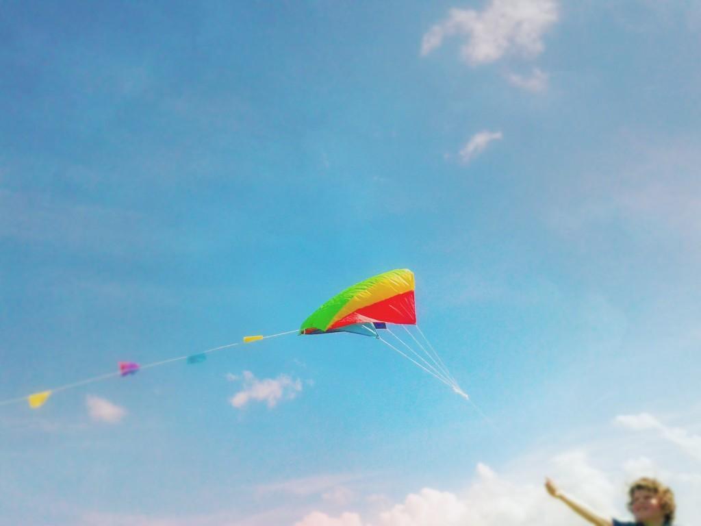 kite pic