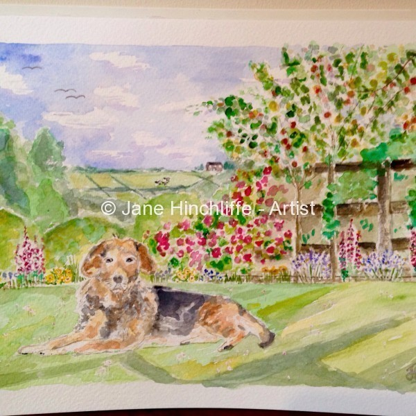 Pet Portrait - A Commissioned Painting - Why not commission your very own family pet portrait with a personalised watercolour painting?  Possibilities could include your beloved dog, cat, horse or even donkey (awww, love them).