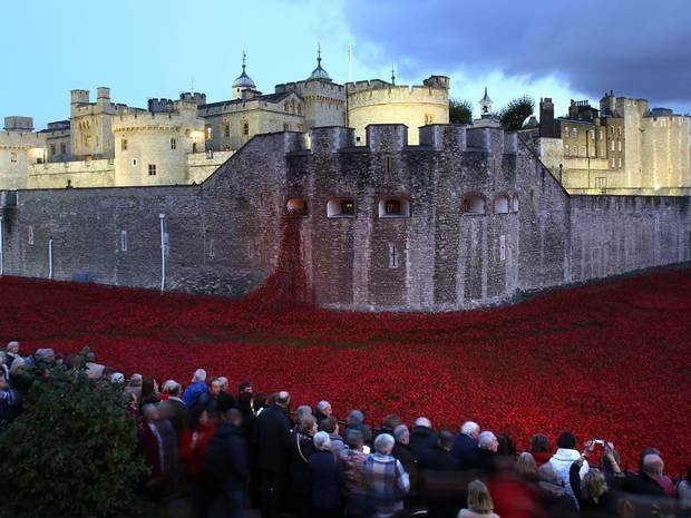 poppy installation