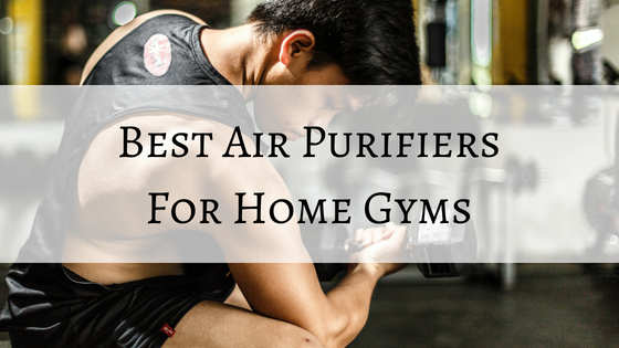 best air purifiers for home gym