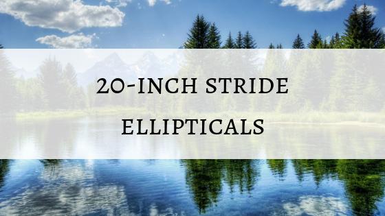 20 inch stride ellipticals.png