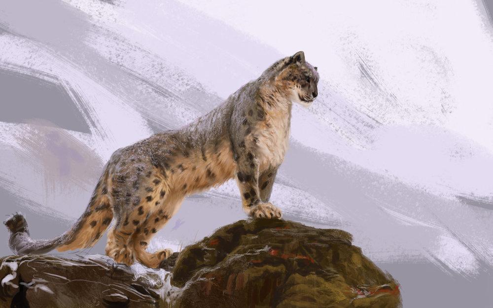 SnowLeopard3.jpg