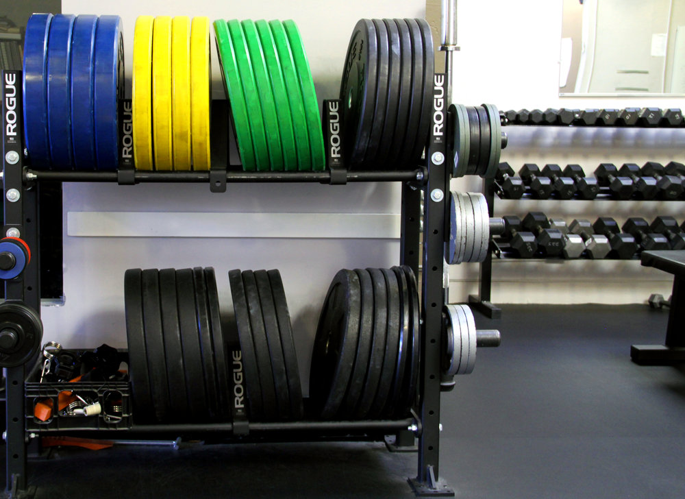 Weights_Color.jpg