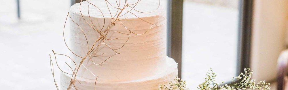 Gallery_Wedding_MichelleAsh_6_1750x550.jpg