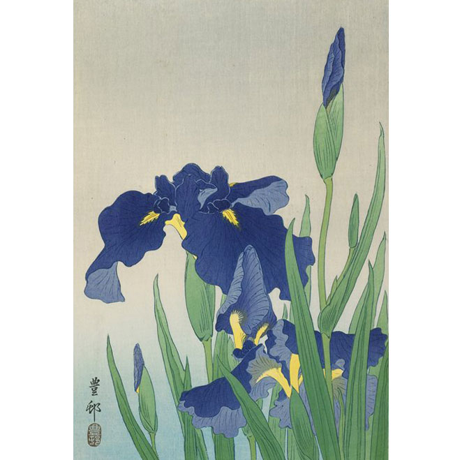 Irises, Woodblock Print by Ohara Koson, 1930s