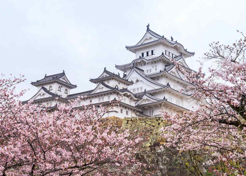 ©  Wei-Te Wong  /  Creative Commons , Himeji Castle Through the Cherry Trees