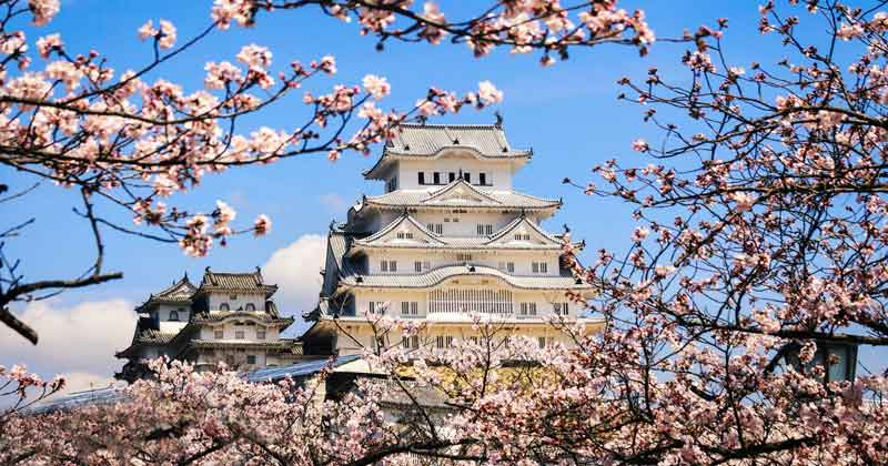 Related: Himeji Castle: All You Need to Know Before You Visit -
