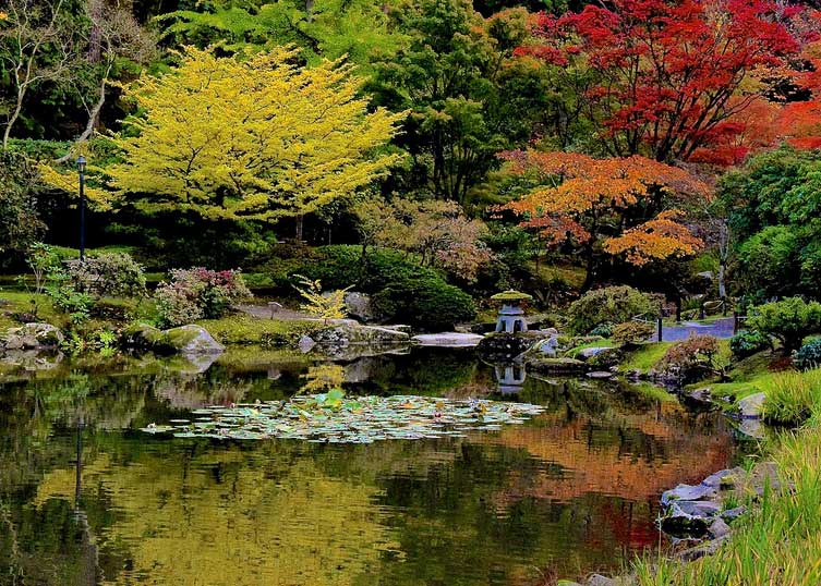 © Seattle Japanese Garden