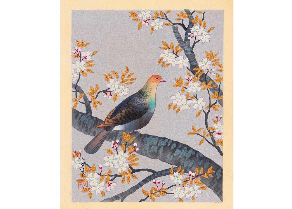 ©Bakufu Ono, Turtle Dove and Cherry, 1950