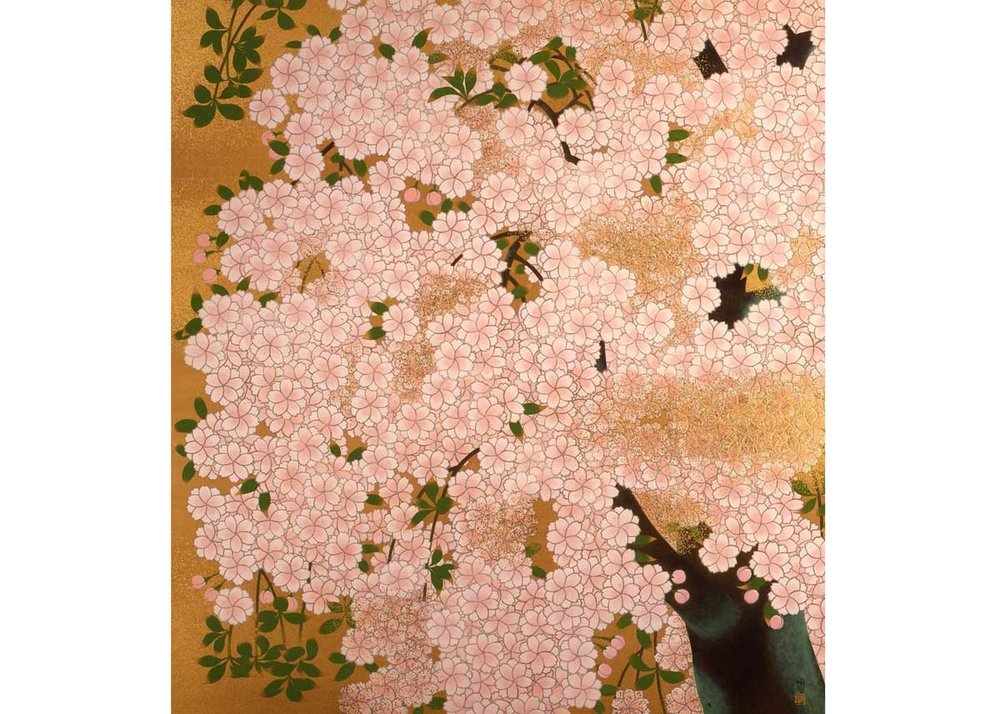 ©Meiji Hashimoto, Sakura, 1970s