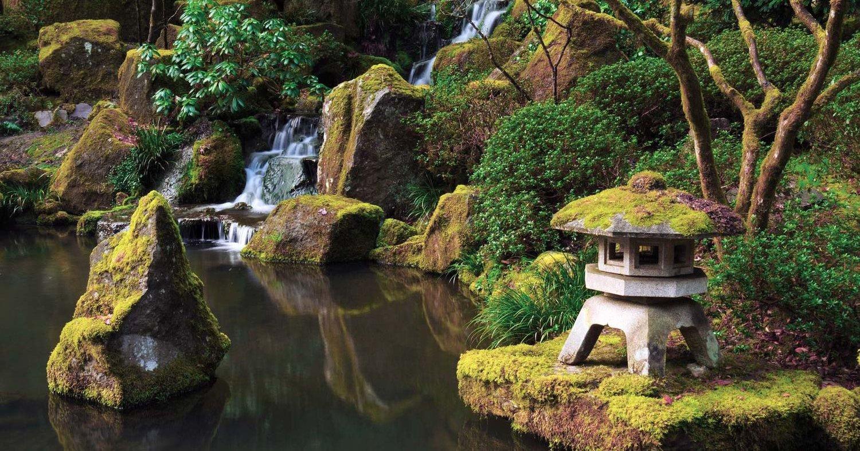 5 Great Reasons To Visit Portland Japanese Garden