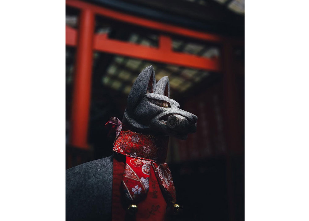 ©Nandin Yuan, Inari Fox