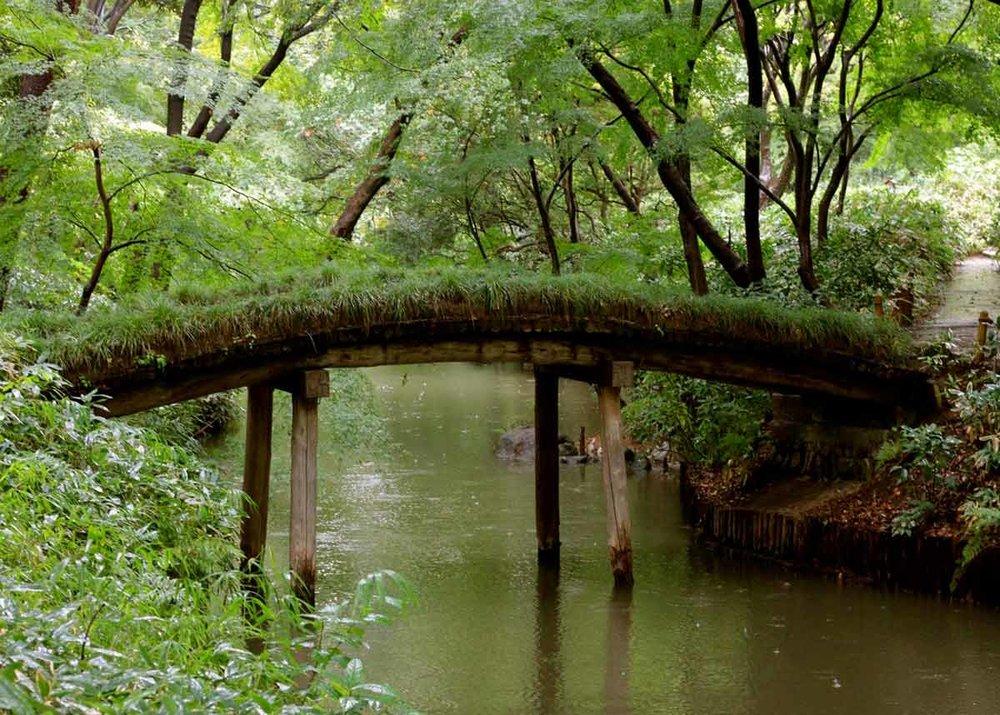 © Anika Ogusu, Real Japanese Gardens, Curved Bridge