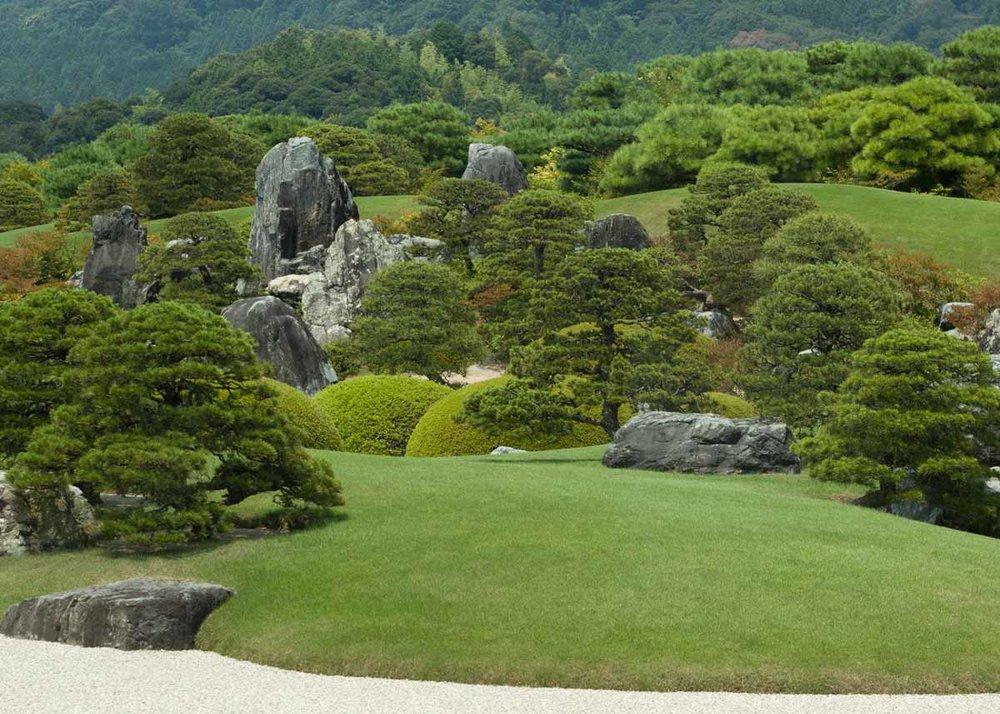 © Anika Ogusu, Real Japanese Gardens, Pine Trees