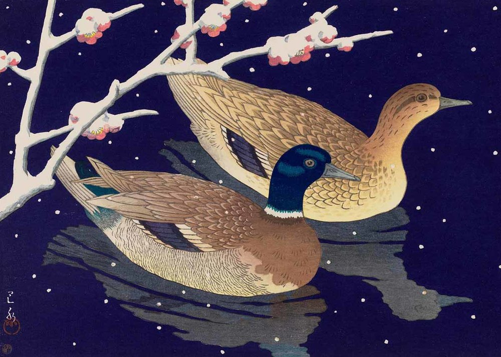 © Hasui Kawase, Mallard Ducks, 1950,  Museum of Fine Arts, Boston