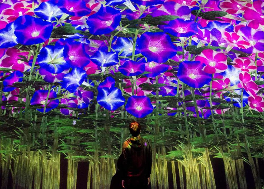 © teamLab, Exhibition view of MORI Building DIGITAL ART MUSEUM: teamLab Borderless, 2018, Odaiba, Tokyo: Spirits of the Flowers