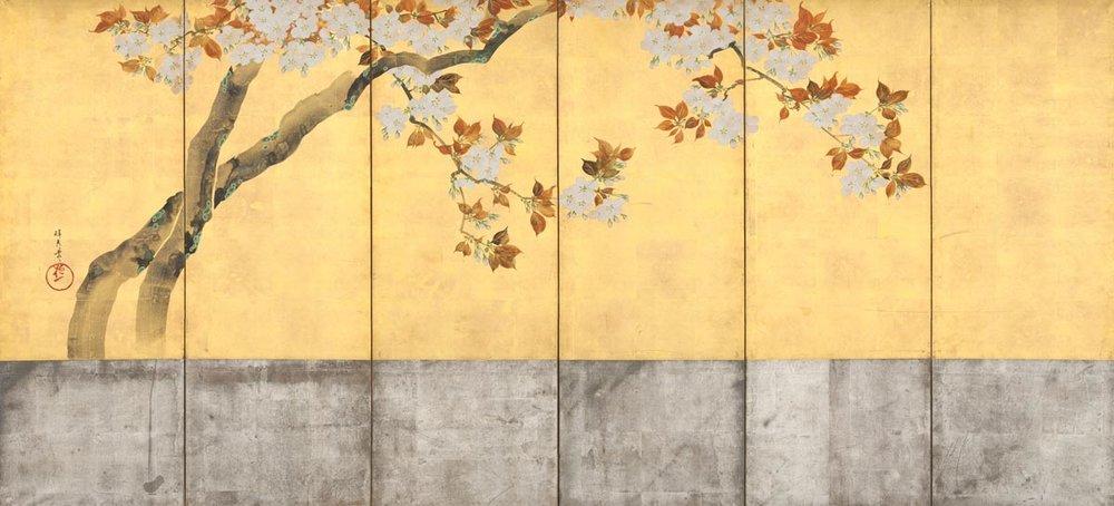 Cherry Tree Screen by Sakai Hoitsu, 1805,  The Met Museum