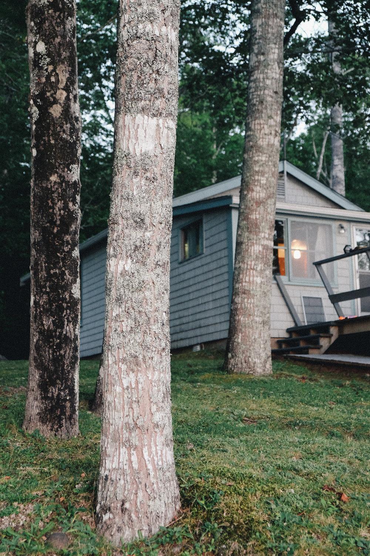 Cottage-20150828-49.jpg
