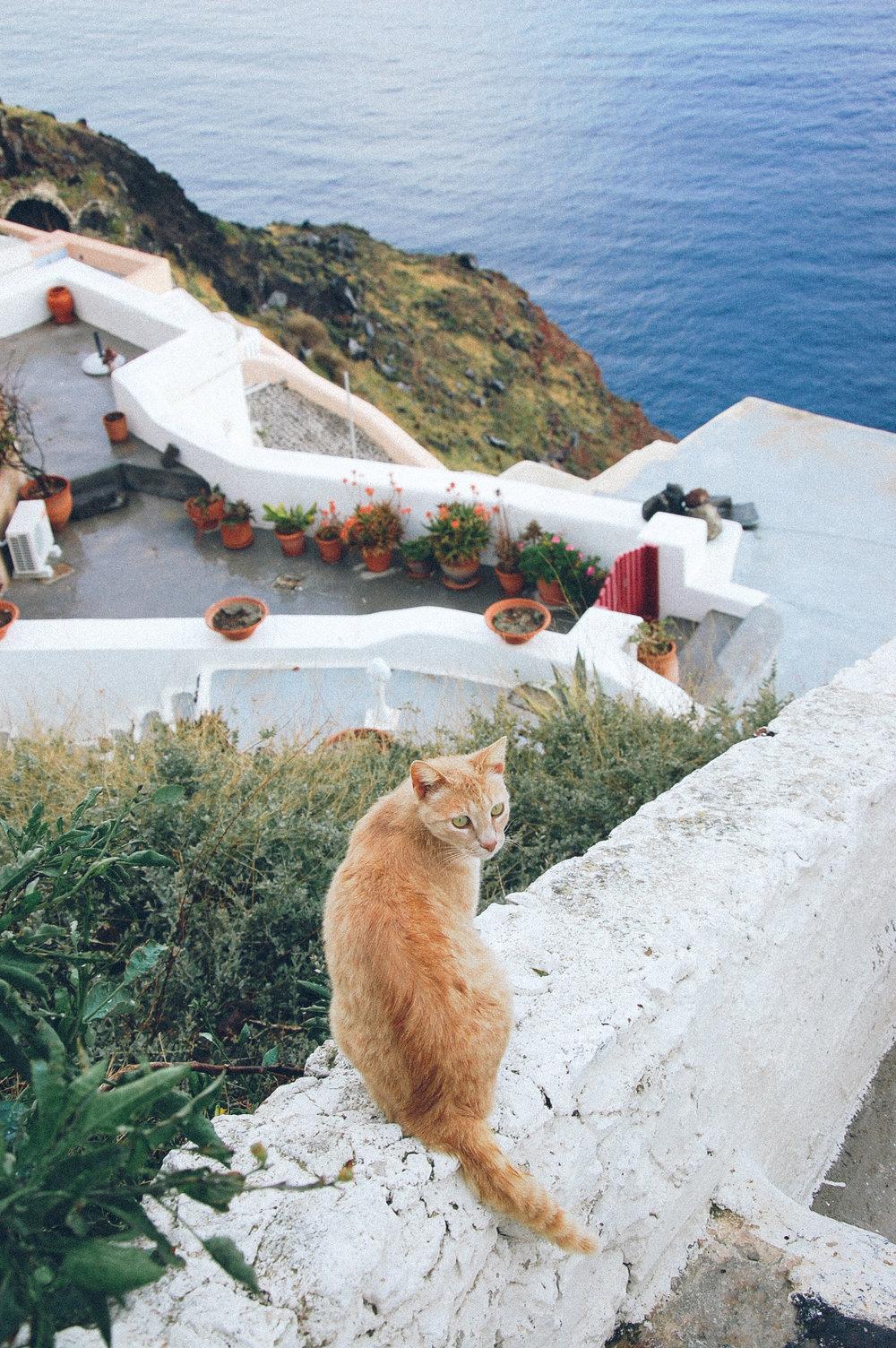 130408-Santorini-68.jpg