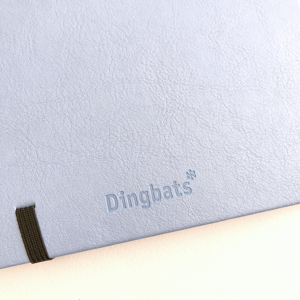 Cover Detail 2- Dingbats Notebook Review.jpg