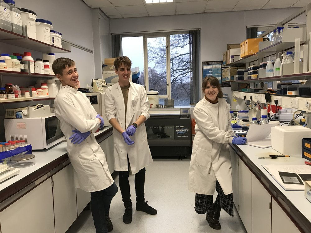 Morgan Rustidge, Josh Zilate, James Taylor - Morgan, James and Josh joined us for their 3rd year lab placement projects at the end of 2018.