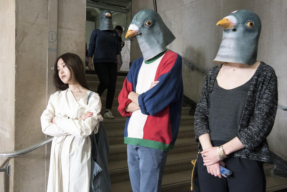 Pigeons (l'habit fait le moine), 2016, Palais de Tokyo, Paris, FR - Photo Credit: Atelier Diptik Source: Rafaela Lopez