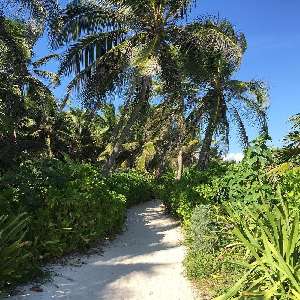 yimis8_worlds most remote beaches_modern getaways.jpg