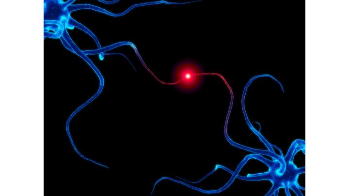 Neuroplasrticity.png